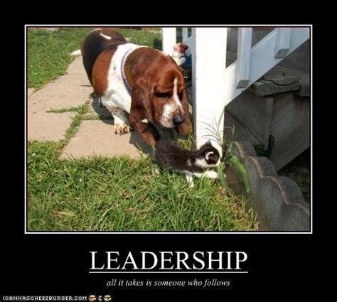 top celebrities leaders top sexi celebrity hollywood funny leadership quotes