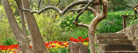 park botanic gardens perth araluen botanic park hectares of breathtakingly