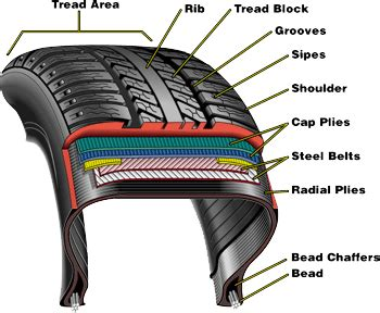 tire cross section diagramtire