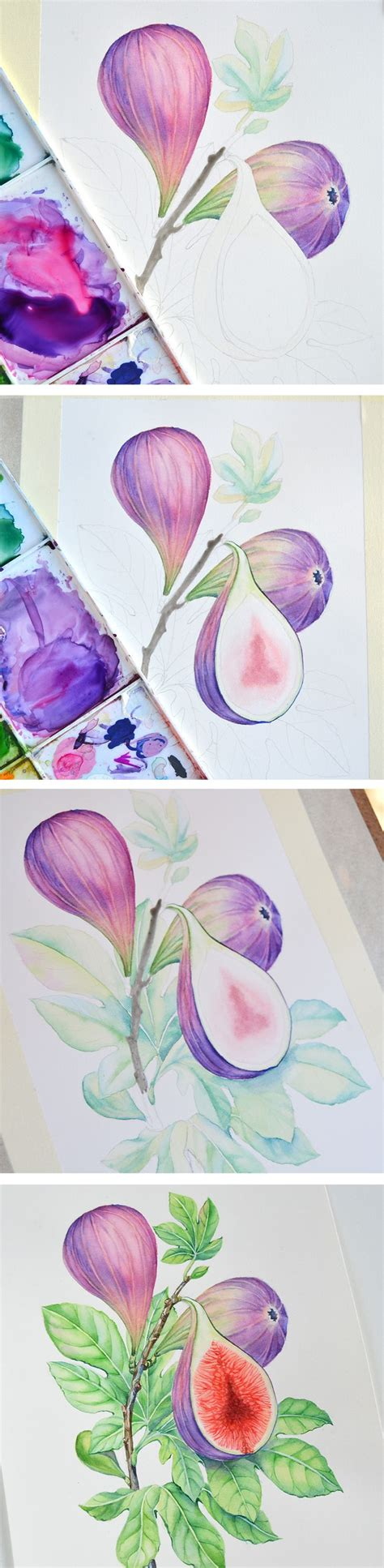 tutorial illustrator watercolor 1000 images about my watercolor illustrations on