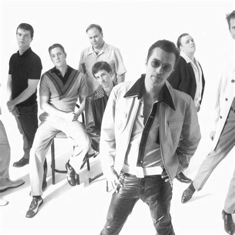 Hassle Free Cherry Poppin by Cherry Poppin Daddies Listen And Free