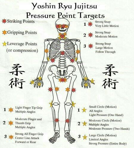 diagram of pressure points on the human diagram of human pressure points gallery how to