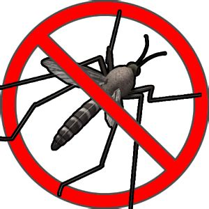anti mosquito sound prank android apps on google play