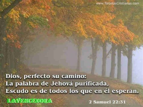 imagenes de reflexion de jesus imagenes de reflexion de dios 6 im 225 genes de dios