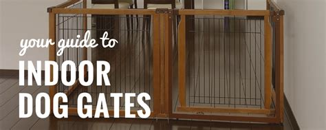 dog gates for inside house 7 best indoor dog gates top dog gates for home