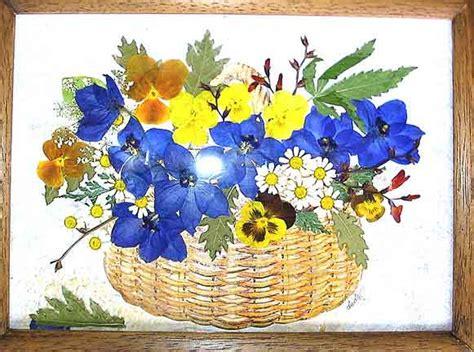 quadri con fiori pressati fiori pressati