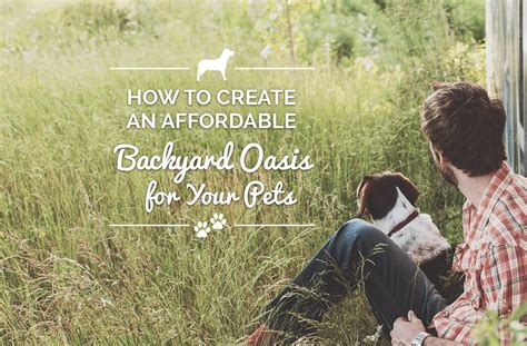 how to create a backyard oasis how to create an affordable backyard oasis for your pet finyl vinyl inc