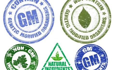 new federal bill aims to squash state gmo labeling efforts