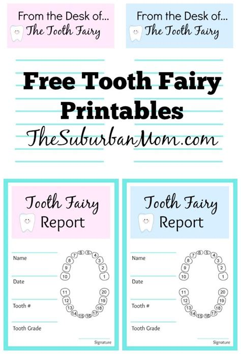 tooth receipt template editable 25 best ideas about tooth receipt on