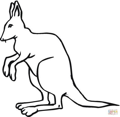 coloring page of kangaroo kangaroo 16 coloring page free printable coloring pages