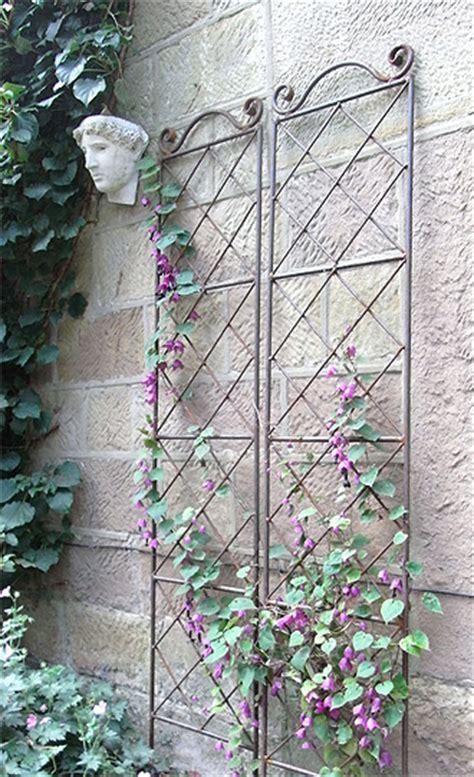 Wrought Iron Garden Trellis Leander Plant Supports