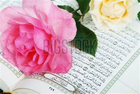 quran wallpaper pink holy quran with pink rose islamic wallpapers kaaba