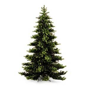 10 ft nikko fir christmas tree at hayneedle