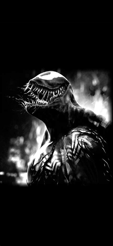 venom wallpaper  iphone  pro max