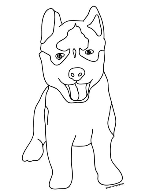 coloring pages of dogs and puppies az coloring pages siberian husky coloring pages az coloring pages husky dog
