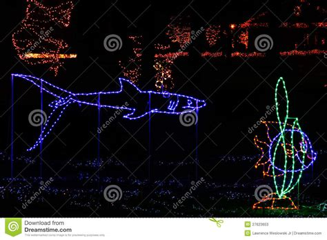 christmas lights tropical fish and shark stock image