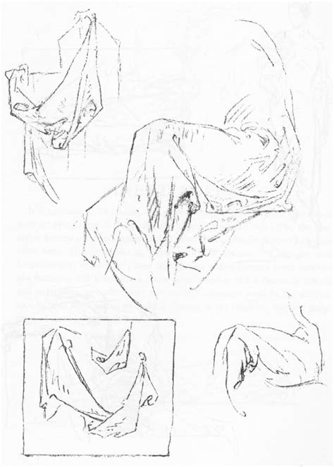 how to draw drapery step by step huge guide to drawing folds in clothing and drapery with