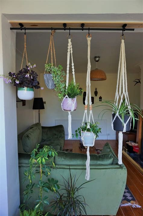 How To Hang Plants From Ceiling by Hanging House Plants An Hack Ukhomebloghop