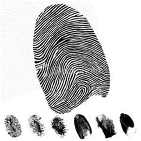 Evidence Of Non Criminal Record For Visa Fingerprint In Forensic Science Is Used To Identify Suspects Victims And Persons Who