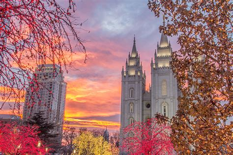 lights temple square 2015 temple square lights and concerts church