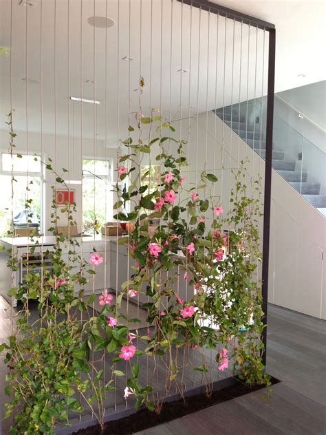 interior wall vertical garden indoor vertical garden