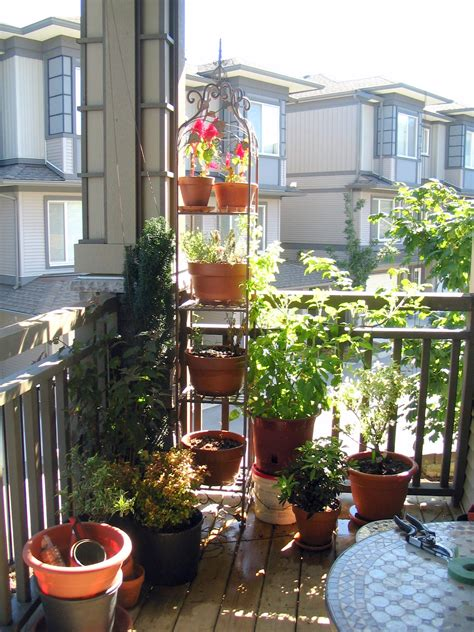 60 Best Balcony Vegetable Garden Ideas 2016 Roundpulse Balcony Vegetable Garden Ideas