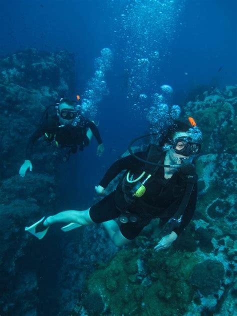 koh tao dive center diving koh tao thailand koh tao divers