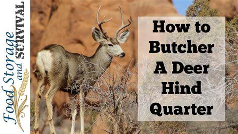 Deer Hind Quarter Diagram