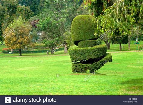 plant sculpture botanical gardens ooty tamilnadu india