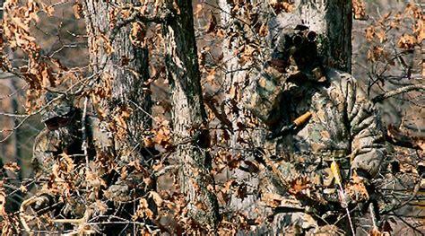 Camoform Real Tree Ap Quality advantage classic 174 camo realtree