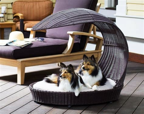 unique pet beds unique dog bed unique doggy beds pinterest