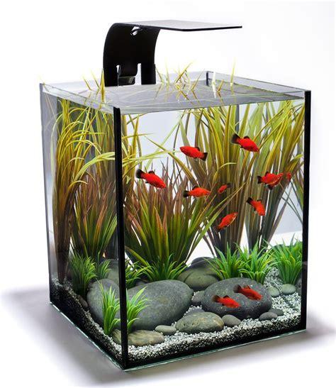 aquarium design group aquascape best 25 aquarium design ideas on pinterest aquarium