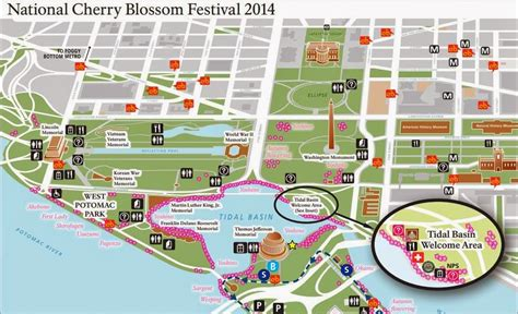 washington dc map tidal basin still fab and traveling cherry blossoms everywhere in