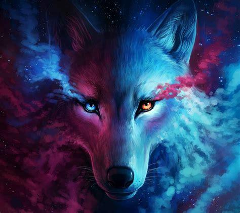 misia bela wolf wallpaper by misia bela fb free on zedge