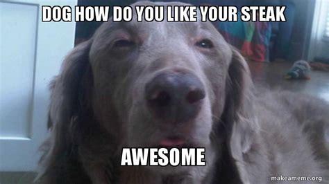 how to make dogs like you how do you like your steak awesome make a meme