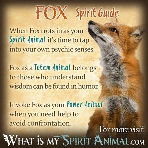 spirit animal fox symbolism meaning spirit totem power animal