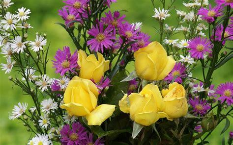 most beautiful flowers around the world pintiutza the most beautiful flower wallpapers of the world