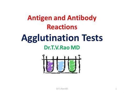 explain the antigen antibody reaction diagram antigen antibody reaction rh images search
