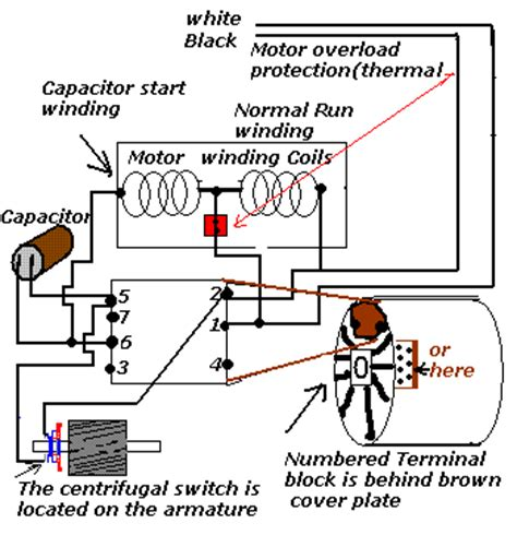 camel washing machine wiring diagram wiring diagram 2018