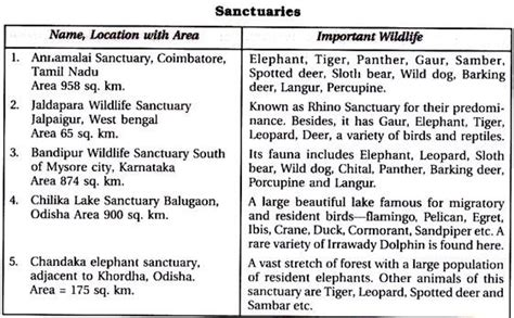 Essay On Nature Conservation For Class 8 by Essay On Sanctuaries In India