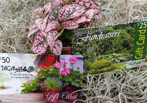 Tagawa Gardens Coupons by Donations Fundraisers At Tagawa Gardens Nursery Garden