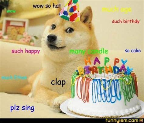 Birthday Cake Dog Meme - doge happy birthday yes memes