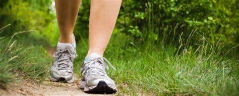 wandlen up and sportief wandelen alblasserdamse atletiek afdeling