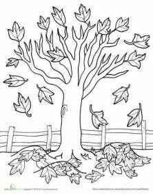 fall tree color page 500 best floral coloring pages for adults images on