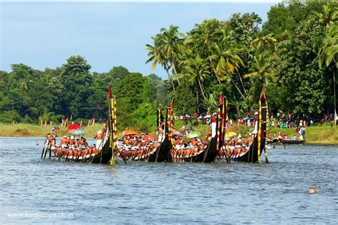 drawing of boat race in kerala aranmula boat race kerala trips