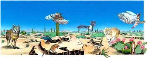 cadenas alimenticias del desierto cadena alimenticia del desierto imagui