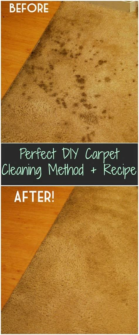 diy rug cleaning carpet cleaning solutions and tips noted list