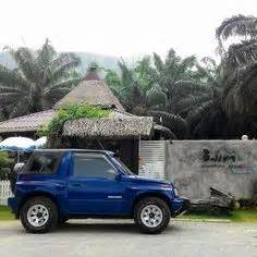 1000+ images about geo tracker on pinterest | convertible
