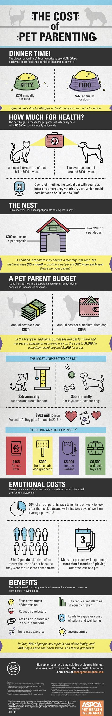 puppy vet visit cost 29 best ideas about pet infographics on cold weather for dogs and pets