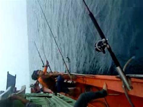 Maguro King Master Ii Sudah Laku mysterious fish kelantan south china east sea flv